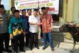 Investor di Barito Timur diajak berbagi hewan kurban
