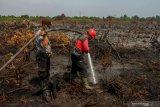 Atasi Karhutla di pesisir Riau, Polres Rohil kerahkan 25 personel Brimob
