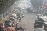 Diselimuti asap, warga Kota Pekanbaru tetap takbiran keliling