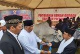 Gubernur Sultra serahkan sapi sumbangan Presiden