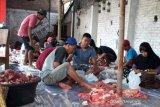 223 hewan kurban di Bantul mengidap cacing hati