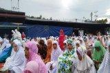 Idul Adha di Jayapura diwarnai penyembelihan 400 ekor hewan kurban