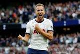 Jika ingin juara, Ferdinand sarankan Harry Kane hengkang dari Spurs