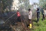 Kebakaran lahan nyaris hanguskan toko bahan bangunan di Sampit