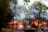 Mengapa kampung adat di NTT rawan kebakaran? ini penjelasannya
