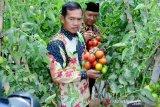 Ciptakan peluang pasar pertanian, Boyolali gelar Agro Expo