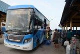 Bus gratis untuk pemudik yang turun di Pelabuhan Tenau Kupang