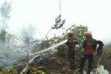 Padamkan kebakaran di Siak, Tim Sinar Mas seminggu lebih tak pulang