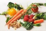 Guru Besar :  pola makan tepat dapat cegah prevalensi penyakit tidak menular
