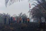 Tim reaksi cepat BPBD Inhil upacara bendera peringatan RI di lokasi Karhutla