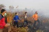 Relawan PKS Kalteng ikut padamkan kebakaran lahan