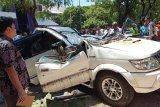 Pohon tumbang timpa Isuzu Panther yang ditumpangi suami istri, satu tewas