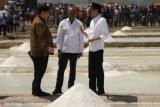 Presiden Jokowi sedih terhadap usaha pengembangan garam di NTT
