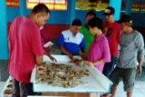 Pendapatan nelayan Teluk Penyu Cilacap anjlok