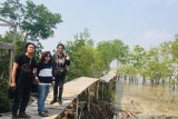 Perjuangan menjaga ekowisata mangrove Sungai Rawa di Siak