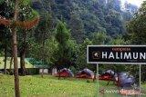 250 peserta HYCamp 2019 siap mendaki Gunung Halimun Bogor