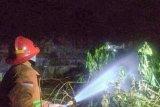Dinas Kebakaran Yogyakarta mengingatkan potensi kebakaran lahan kosong