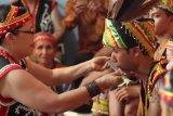 MADN harap pemerintah beri lahan 5 Ha per keluarga kepada suku Dayak