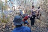 Hutan Gunung Guntur Garut tiga kali terbakar selama kemarau