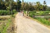 Legislator harapkan Pemkab Kulon Progo memperbaiki ruas jalan Kemukus