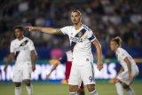 Ibrahimovic: Saya bersedia kembali, jika MU butuh bantuan saya