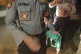 Warga temukan granat peninggalan zaman perang dunia II buatan Jepang