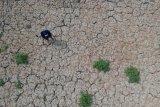 ACT bantu permudah akses air melalui pipanisasi di Bojonegoro
