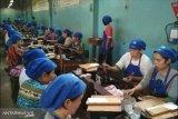 Pukat UGM minta pemerintah gandeng KPK untuk amankan penerimaan cukai