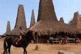 Rumah tradisional Kampung Toda tempat singgah wisatawan di Sumba Barat Daya