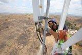 XL Axiata Perluas Jaringan 4G Dorong Perekonomian di Sumbawa