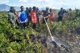 Terbakar, 20 hektare lahan gambut di Kolaka Timur