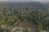 Wisata hutan hujan tropis di kawasan ibu kota baru