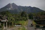 Guguran lava keluar dari Gunung Merapi dengan jarak luncur 700 meter