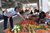 Pengamat nilai Pemerintah perlu gerak cepat atasi masalah di Papua