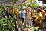Mantan anggota DPRD kembangkan bisnis agrowisata