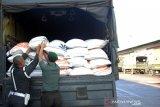 Bantuan beras untuk Papua