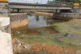 Waduk Gesek Bintan kembali normal usai hujan
