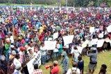 Papua Terkini - DPR panggil Menlu terkait WNA di Papua merdeka