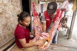 Seorang dokter memeriksa kesehatan bayi di Cemarajaya, Karawang, Jawa Barat, Selasa (3/9/2019). Pertamina bersama Pertamedika melakukan pemeriksaan kesehatan keliling kepada warga di wilayah terdampak tumpahan minyak mentah meliputi pemeriksaan fisik, tekanan darah dan pengobatan penyakit lainnya. ANTARA FOTO/M Ibnu Chazar/agr