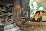 Gara-gara curi dongkrak mobil, Paozi diancam 4 tahun kurungan