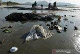 Nelayan memisahkan sampah plastik bekas bercampur sampah kayu yang terjaring pukat pantai di perairan Kampung Jawa, Banda Aceh, Aceh, Selasa (3/9/2019). Nelayan tradisional di daerah itu mengeluh hasil tangkapan ikan menurun drastis sehubungan perairan tercemar berbagai jenis sampah plastik bekas bercampur sampah kayu yang hanyut ke laut terbawa arus sungai dan selain sampah dari pengunjung pantai. Antara Aceh/Ampelsa.