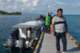 Opini - Tol Tambu-Kasimbar bisa mengurai 'kebuntutan' Papua