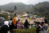 Kawin kontrak di kawasan puncak Bogor 'Wisata Halal'