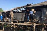 Peternakan babi di Makassar segera direlokasi