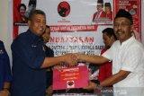 Nasdem ingin PDIP pengusung utama Ahmad Ali di Pilkada Sulteng