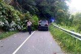 Pohon tumbang di Kelok 5, lalu lintas Maninjau-Bukittinggi terganggu