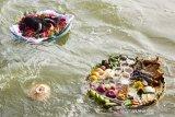 Sejumlah sesajian yang diarungkan di aliran sungai saat tradisi babaritan di Kampung Guro III, Desa Karawang Wetan, Karawang, Jawa Barat, Sabtu (7/9/2019). Tradisi tersebut dilakukan untuk menjaga dan melestarikan tradisi leluhur sebagai bentuk rasa bersyukur atas rezeki melalui seluruh kekayaan hasil bumi dari darat, laut dan udara yang diberikan Tuhan. ANTARA FOTO/M Ibnu Chazar/agr
