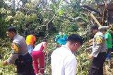 88 unit bangunan terdampak puting-beliung di Solok Selatan