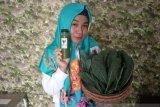 Berawal bujuk anak, Lia mengembangkan bisnis jus sayuran