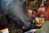 Pengunjung museum SMB II Palembang  meningkat akhir pekan